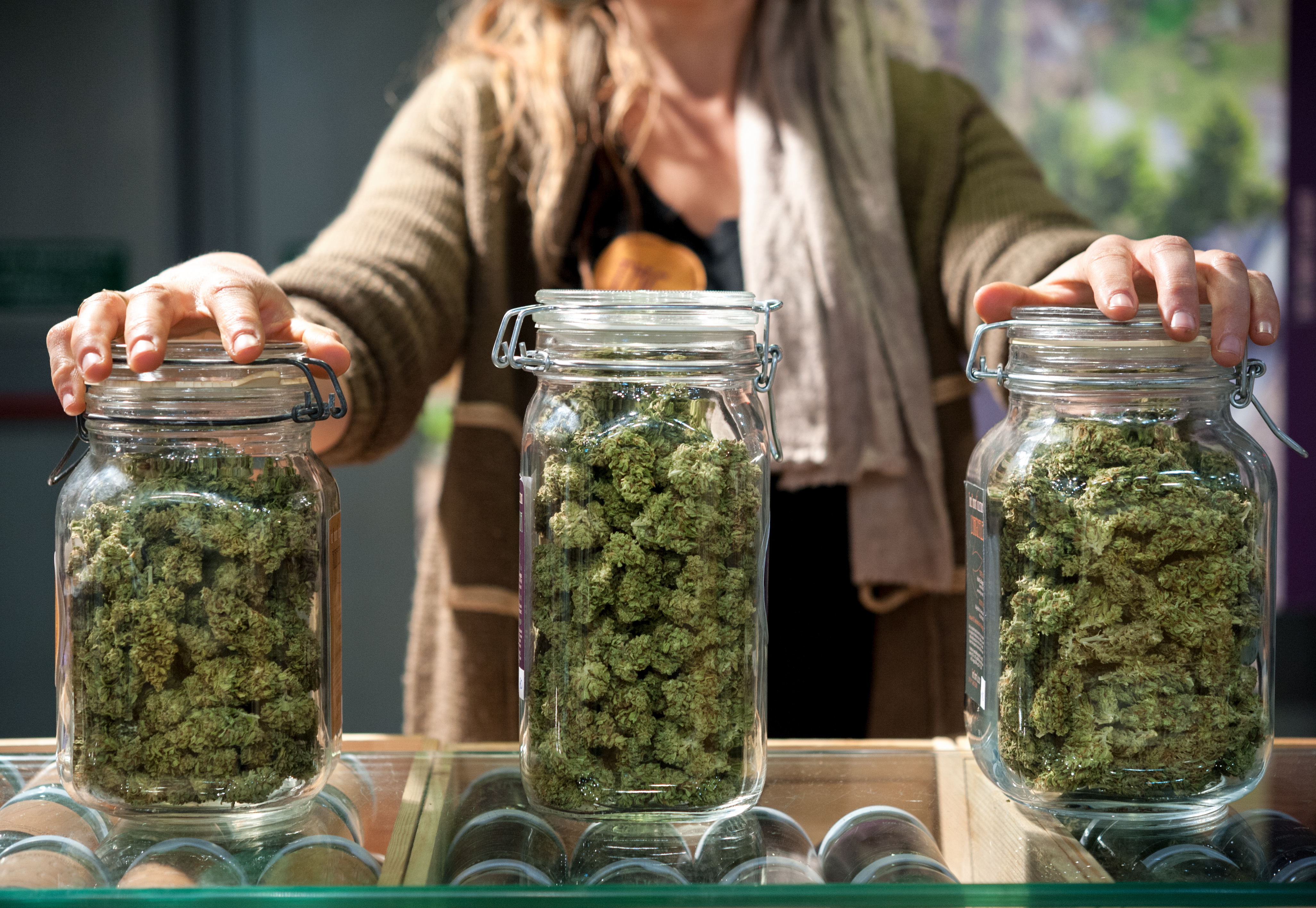 Cannabis: know all its forms of names